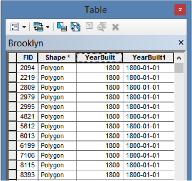 Table 1_BrooklynData